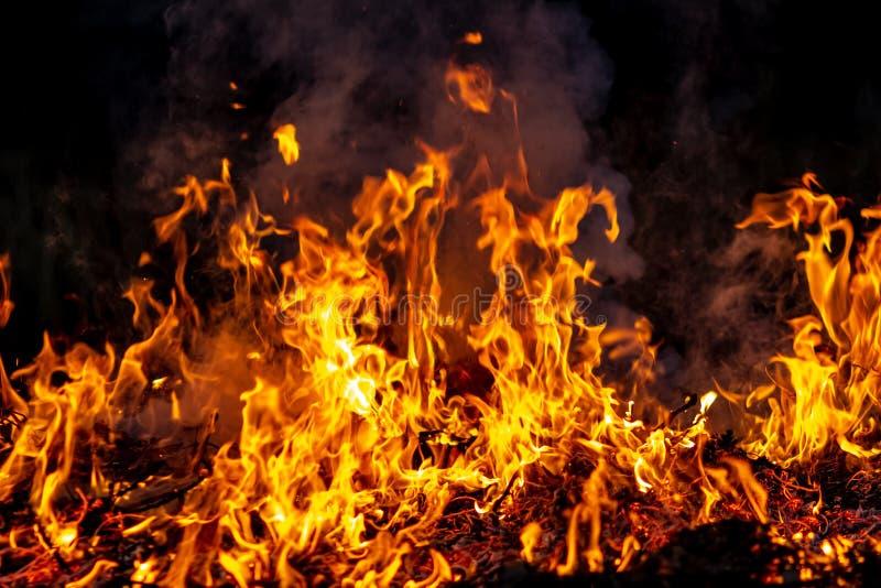 Δασική ολόκληρη περιοχή πυρκαγιών τη νύχτα που καλύπτεται από τη φλόγα και τα σύννεφα του σκοτεινού καπνού Διαστρεβλωμένος οφειλό στοκ εικόνα