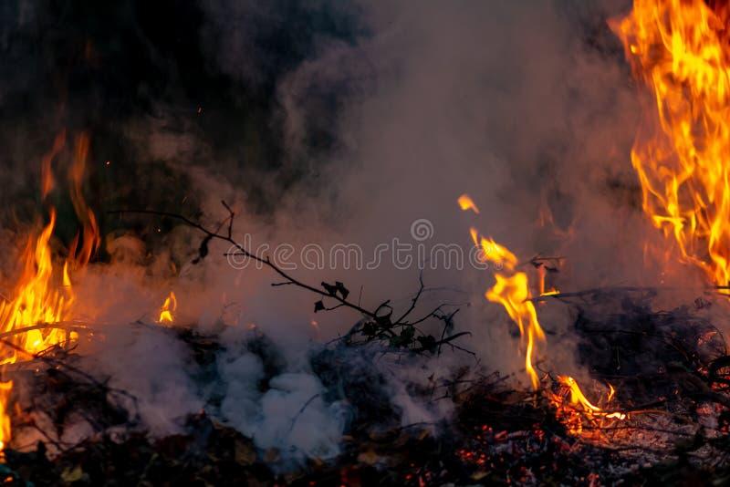 Δασική ολόκληρη περιοχή πυρκαγιών τη νύχτα που καλύπτεται από τη φλόγα και τα σύννεφα του σκοτεινού καπνού Διαστρεβλωμένος οφειλό στοκ φωτογραφίες με δικαίωμα ελεύθερης χρήσης