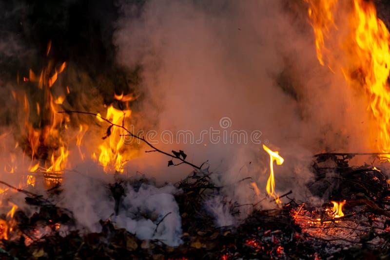 Δασική ολόκληρη περιοχή πυρκαγιών τη νύχτα που καλύπτεται από τη φλόγα και τα σύννεφα του σκοτεινού καπνού Διαστρεβλωμένος οφειλό στοκ φωτογραφίες