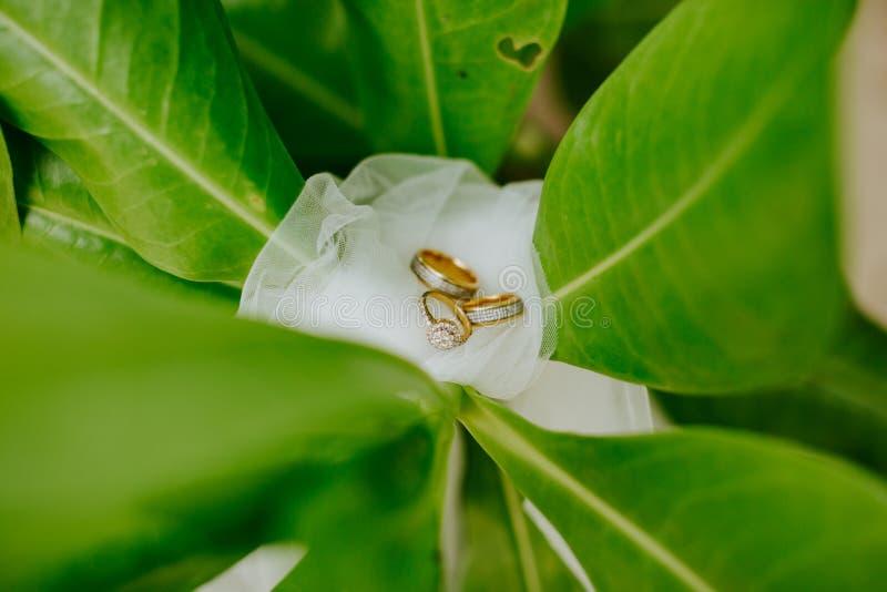 Δαχτυλίδι δέσμευσης και γάμου στην παραλία στοκ εικόνα