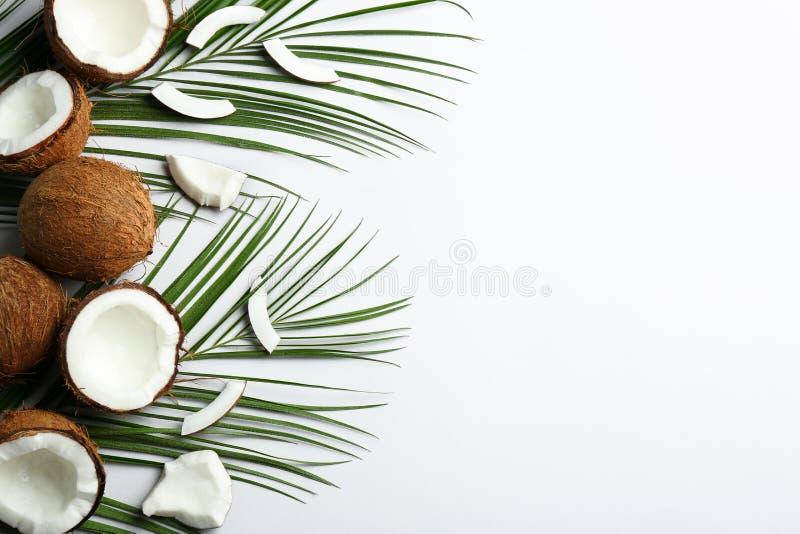 Δημιουργική σύνθεση με τις καρύδες στο άσπρο υπόβαθρο στοκ εικόνες με δικαίωμα ελεύθερης χρήσης