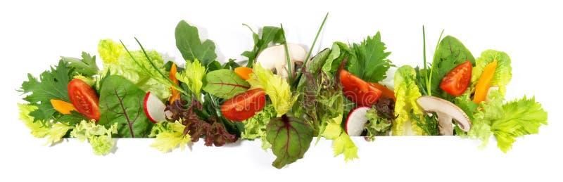 Διάφορο πανόραμα σαλάτας στοκ φωτογραφίες