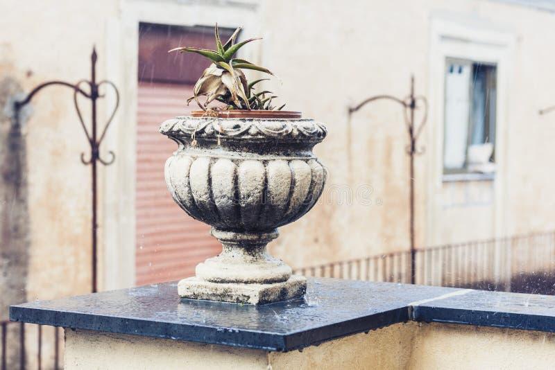 Διακοσμητικό δοχείο πετρών για τις εγκαταστάσεις στο πεζούλι ενός ιστορικού κτηρίου στην Κατάνια, Σικελία, Ιταλία, βροχερή ημέρα στοκ εικόνα