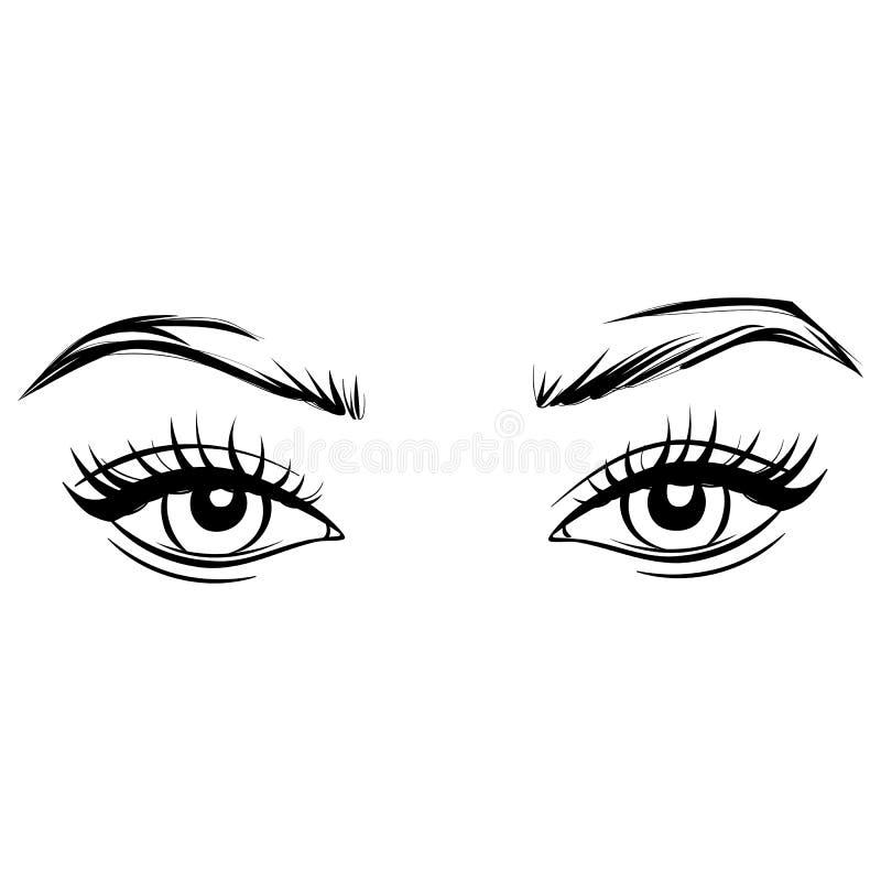 Διανυσματικά συρμένα χέρι όμορφα θηλυκά μάτια με τα μακροχρόνια μαύρα eyelashes και brows ελεύθερη απεικόνιση δικαιώματος