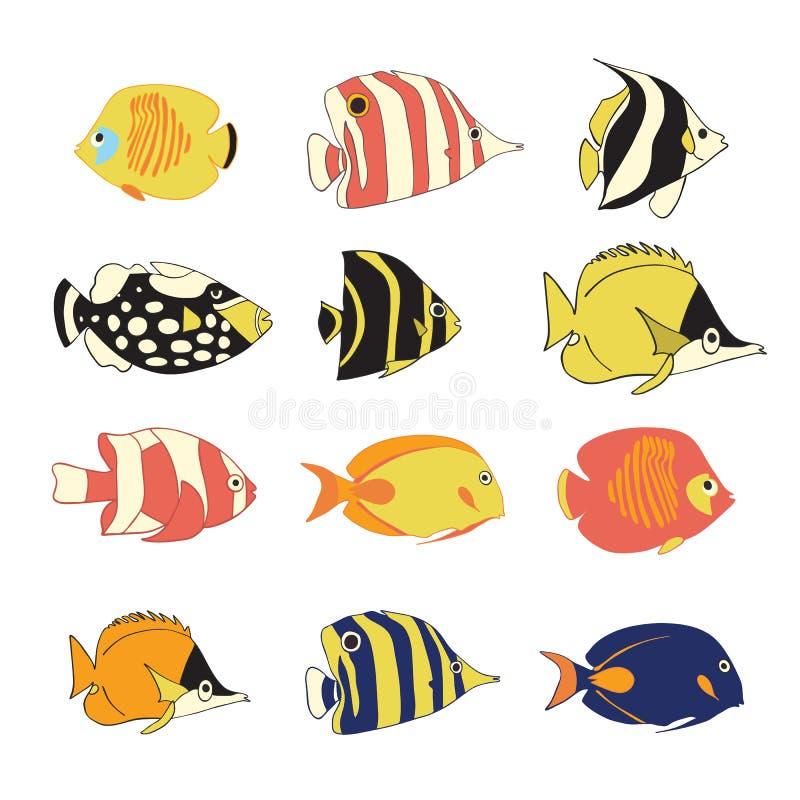 Διανυσματικά ψάρια σκοπέλων εικονιδίων καθορισμένα τροπικά Το διάνυσμα απομόνωσε τους εξωτικούς χαρακτήρες ψαριών Ζωηρόχρωμο Butt ελεύθερη απεικόνιση δικαιώματος