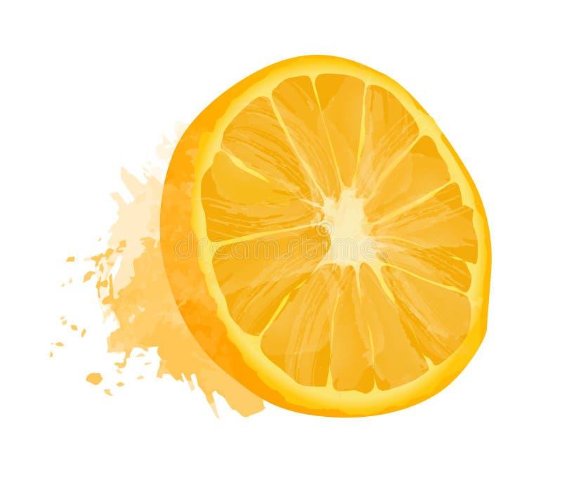 Διανυσματική πορτοκαλιά απεικόνιση με την επίδραση watercolor που απομονώνεται στο άσπρο υπόβαθρο απεικόνιση αποθεμάτων