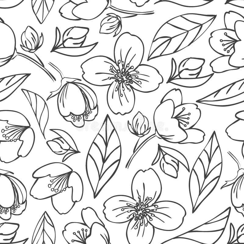 Διανυσματικό άνευ ραφής περιγραμμένο σχέδιο με jasmine τα στοιχεία ελεύθερη απεικόνιση δικαιώματος