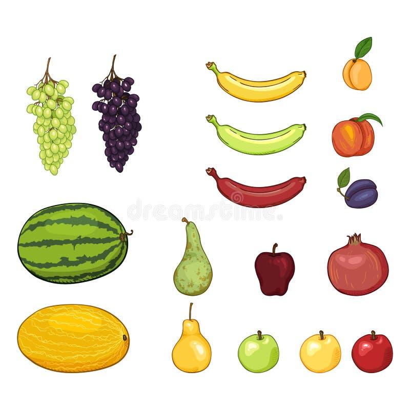 Διανυσματικό σύνολο φρούτων κινούμενων σχεδίων Σταφύλια, πεπόνι, καρπούζι, αχλάδι, Apple, μπανάνα, βερίκοκο, ροδάκινο, δαμάσκηνο, ελεύθερη απεικόνιση δικαιώματος