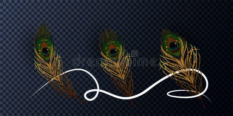 Διανυσματικό φτερό απεικόνισης αποθεμάτων peacock που απομονώνεται σε ένα διαφανές υπόβαθρο 10 eps διανυσματική απεικόνιση
