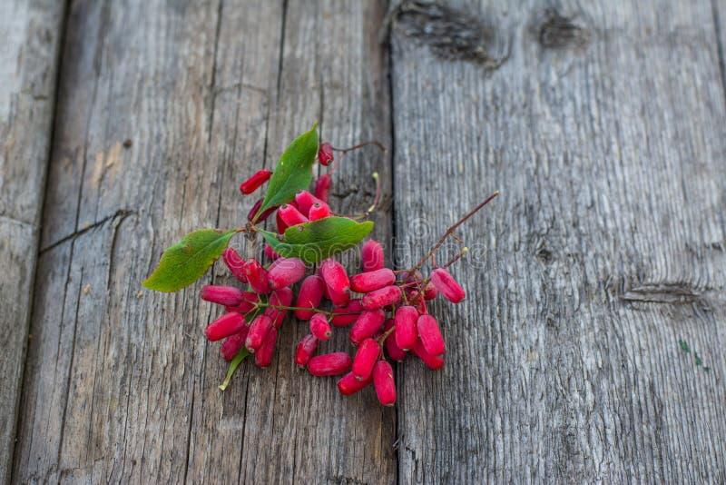 Δροσιά στα μούρα άγριο barberry στον ξύλινο πίνακα Μούρα στη χλόη Πράσινη χλόη άγρια περιοχές μούρων Πιάτο Δημοκρατίας του Ουζμπε στοκ εικόνα με δικαίωμα ελεύθερης χρήσης