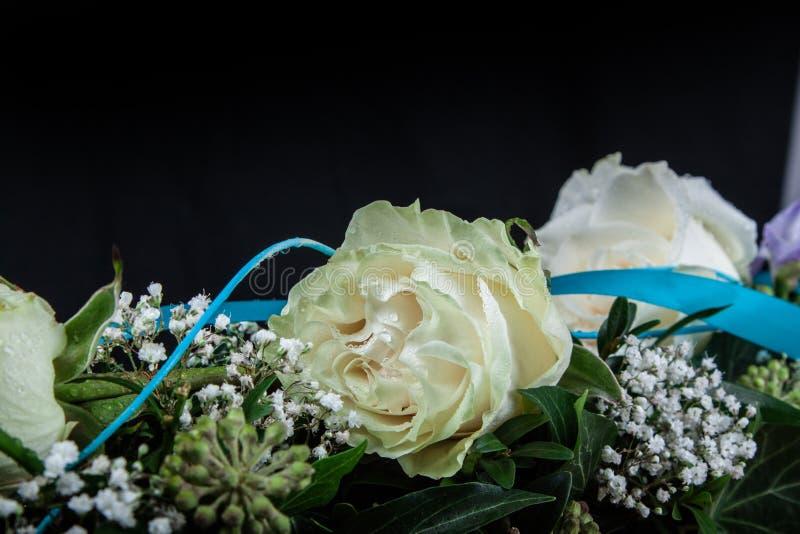 Δροσοσκέπαστο λουλούδι των τριαντάφυλλων στοκ φωτογραφία
