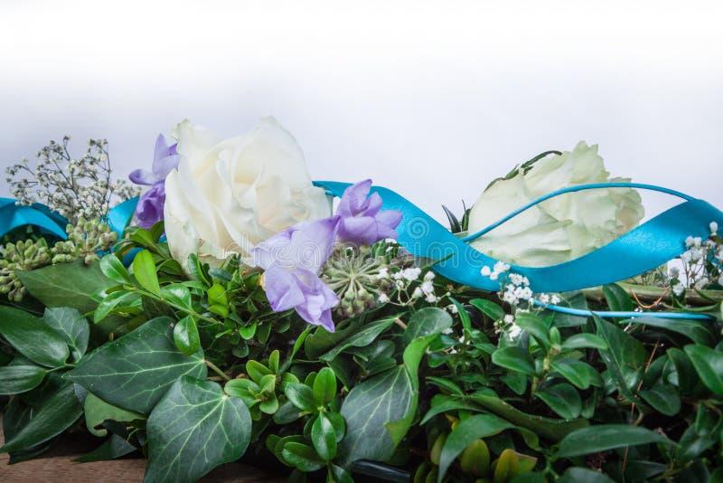 Δροσοσκέπαστο λουλούδι των τριαντάφυλλων στοκ φωτογραφία με δικαίωμα ελεύθερης χρήσης
