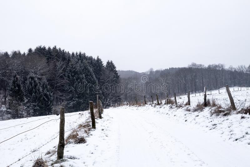 Δρόμος μεταξύ των τομέων και των δασών που καλύπτονται με το χιόνι σε ένα χειμερινό τοπίο στοκ εικόνα