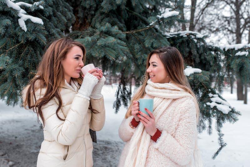 Δύο ευτυχή κορίτσια φίλων που μιλούν το χειμώνα σταθμεύουν στο υπόβαθρο των πράσινων χριστουγεννιάτικων δέντρων Στα χέρια του τσα στοκ φωτογραφίες με δικαίωμα ελεύθερης χρήσης