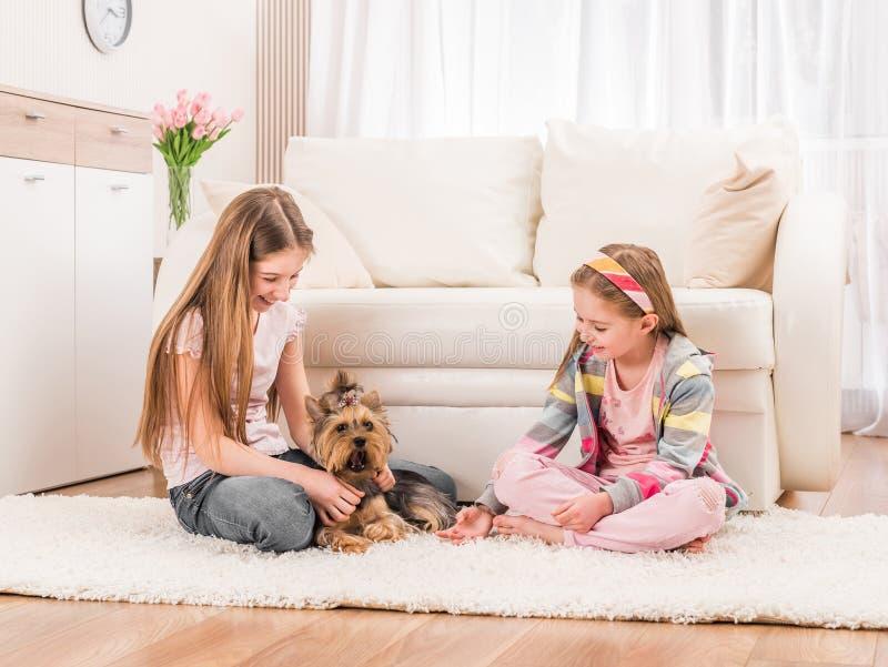 Δύο κορίτσια που παίζουν με το yorkie στοκ εικόνες