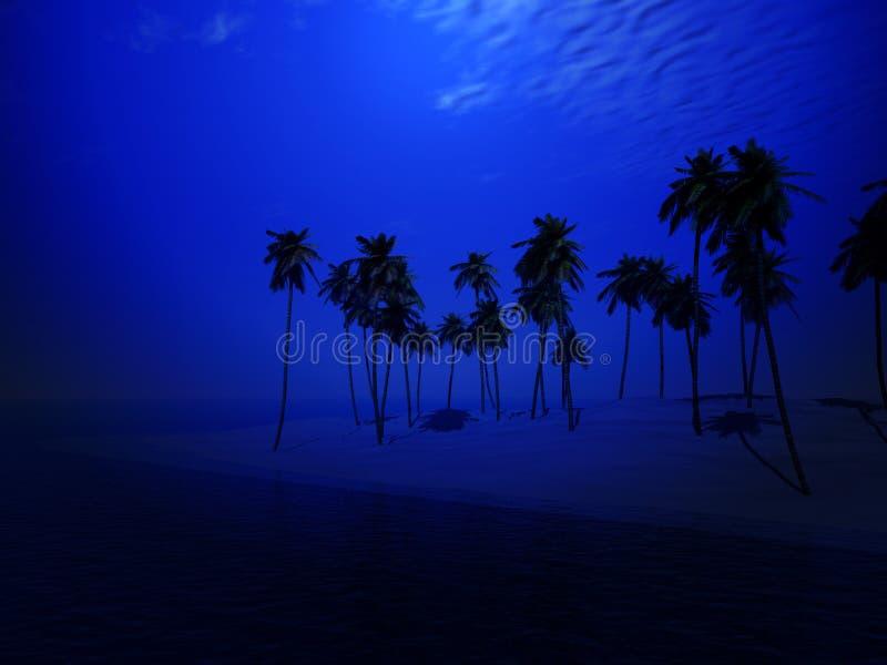 Île 44 De Palmier Photographie stock libre de droits