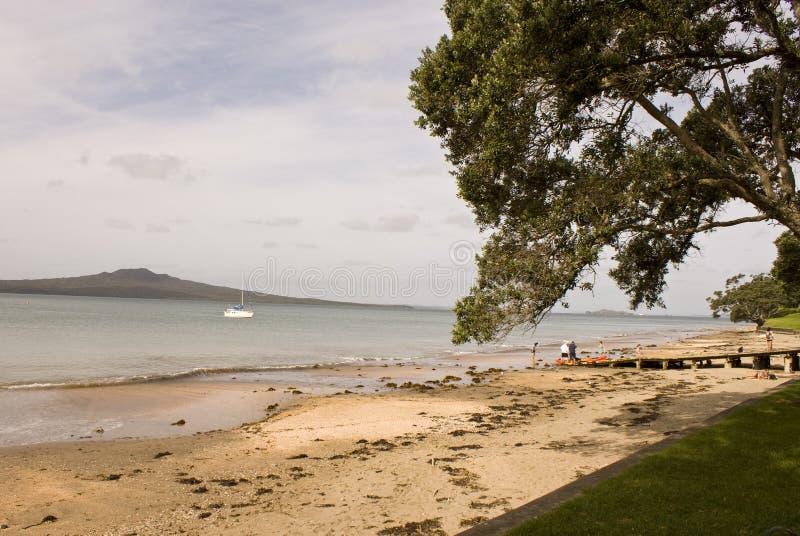 Île Auckland de Rangitoto image libre de droits