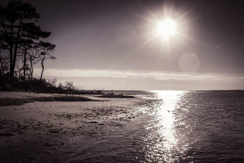 Île d'Assateague image libre de droits