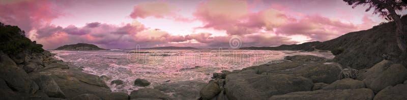Île d'oiseau de mouton photographie stock libre de droits