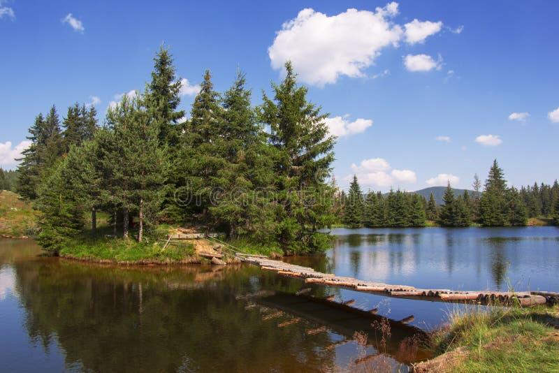 Île dans le lac images libres de droits