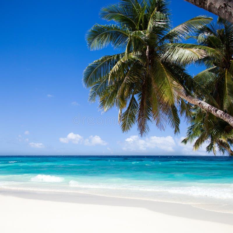 Île de Boracay Plage blanche image stock