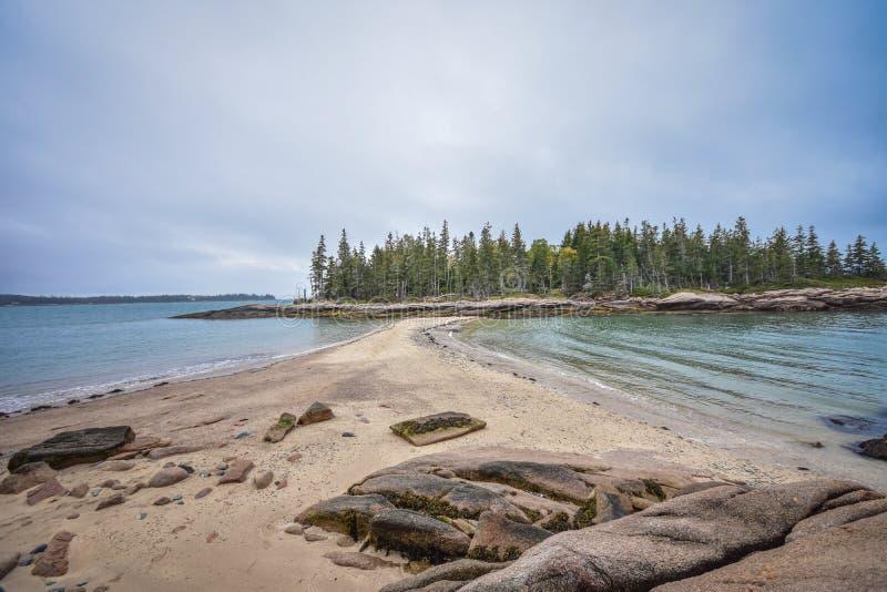 Île de cerfs communs, Maine photos libres de droits