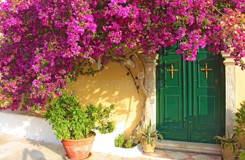 île de Corfou Grèce Arbre avec les fleurs et l'entrée roses d'église photographie stock libre de droits