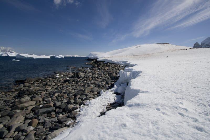 île de cuverville de l'Antarctique images stock