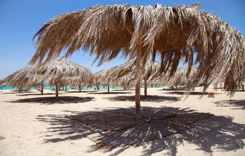 Île de Giftun à la Mer Rouge photo stock