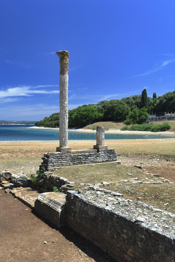 Île de la Croatie - de Brijun photographie stock