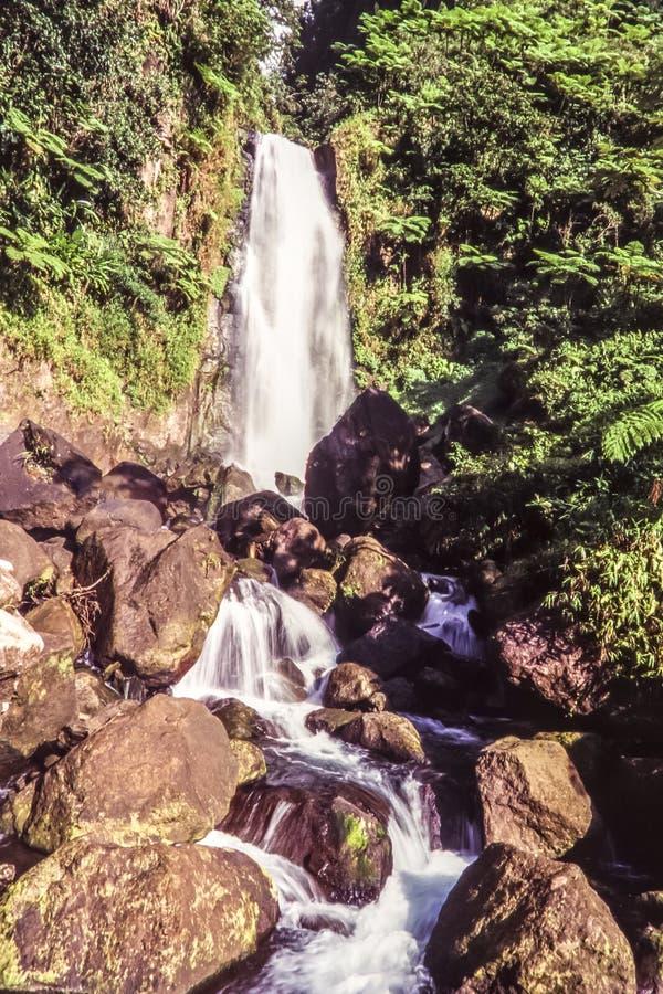 Île de la Dominique photographie stock libre de droits