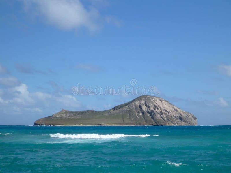 Île de Manana (lapin) dans la baie de Waimanalo photos libres de droits