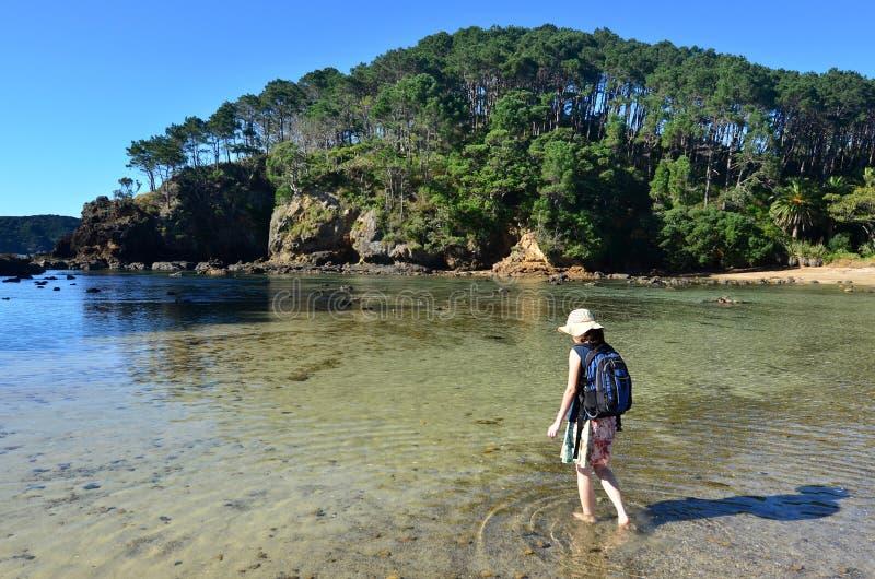 Île de Roberton dans la baie des îles Nouvelle-Zélande image libre de droits
