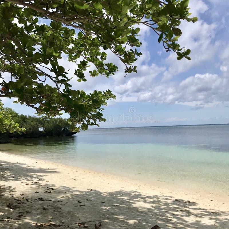 Île de siquijor de plage de Paliton image stock