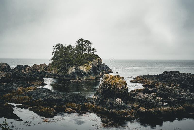Île de Vancouver de côte ouest près de Canada de Colombie-Britannique d'Ucluelet sur la traînée Pacifique sauvage photos stock