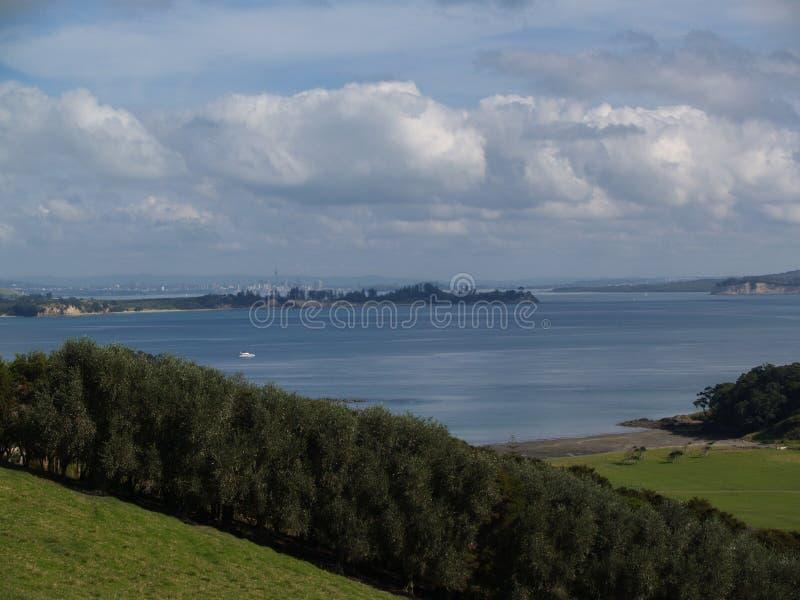 Île de Waiheke - Nouvelle-Zélande image libre de droits