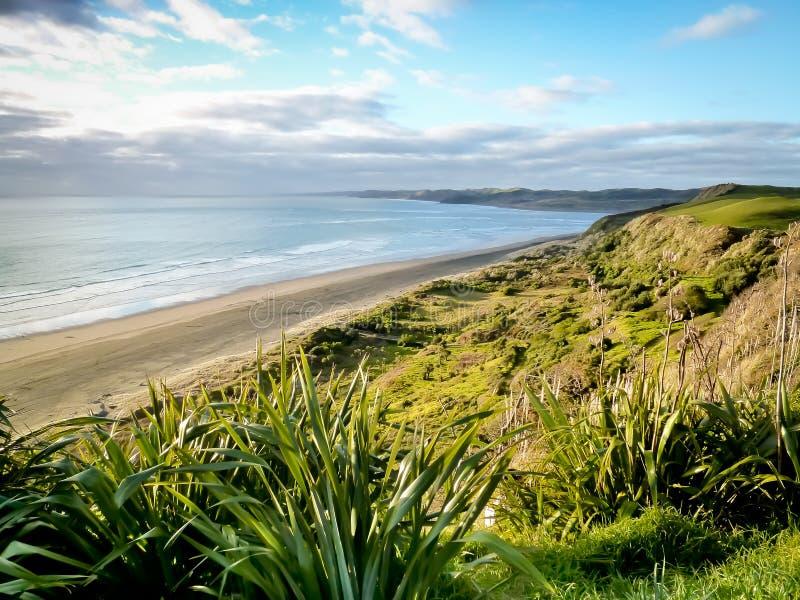 Île du nord Nouvelle-Zélande de plage raglane de ressac images libres de droits