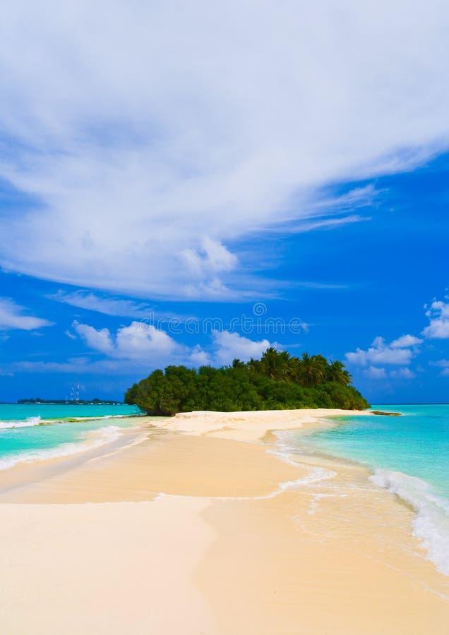 Île et côté tropicaux de sable photographie stock