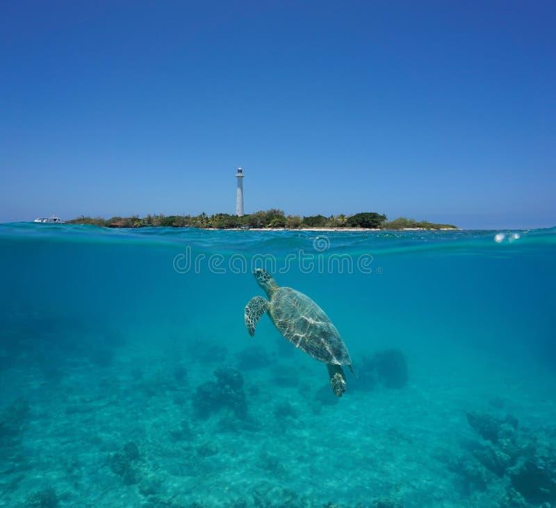 Île fendue Nouvelle-Calédonie d'Amedee de tortue de mer photographie stock