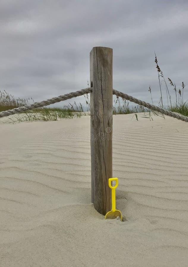 Île la Caroline du Nord de tête chauve image libre de droits