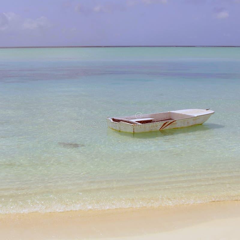 Île maldivienne photographie stock libre de droits