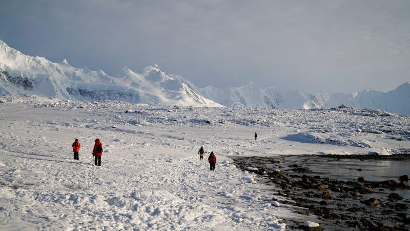 Île neigeuse l'explorant de Wiencke en Antarctique photos stock