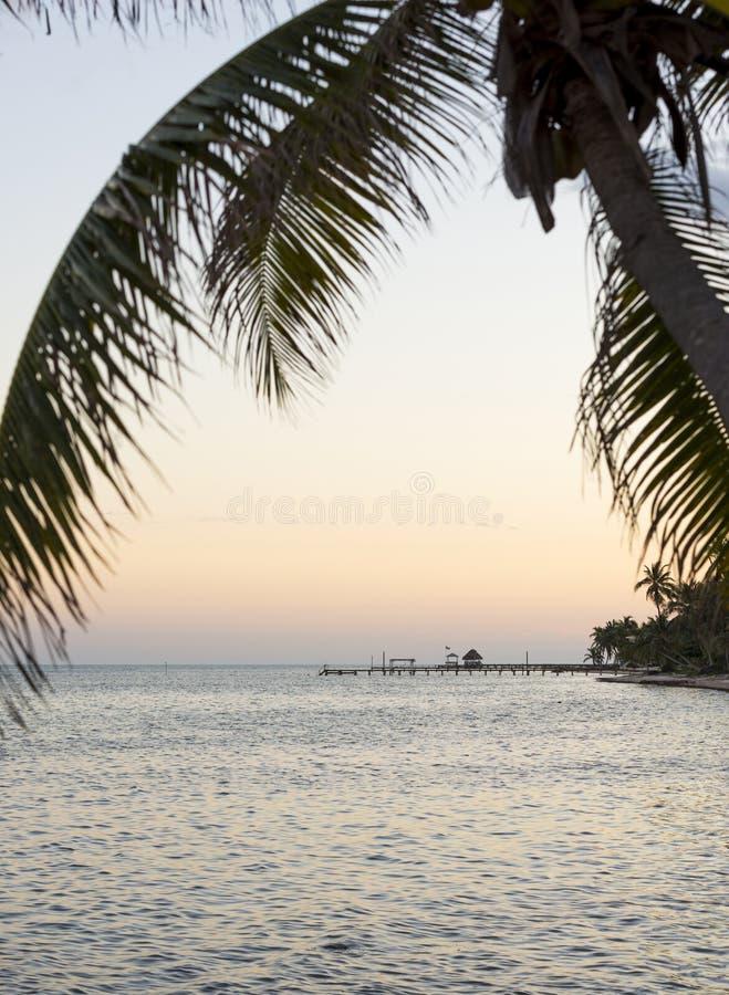 Île Palmtree au-dessus de mer images stock