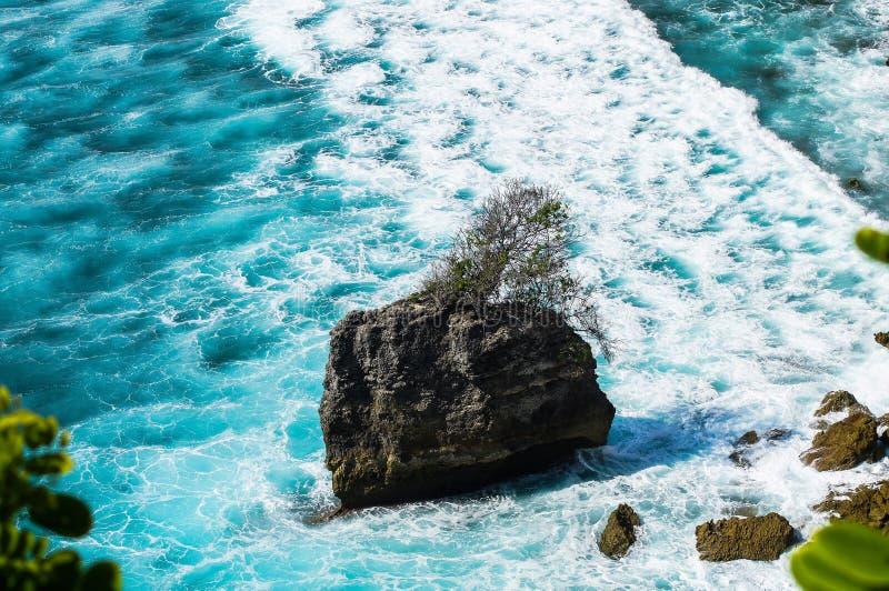 Île rocheuse avec l'arbre dans les vagues mousseuses moyennes Uluwatu bali images stock