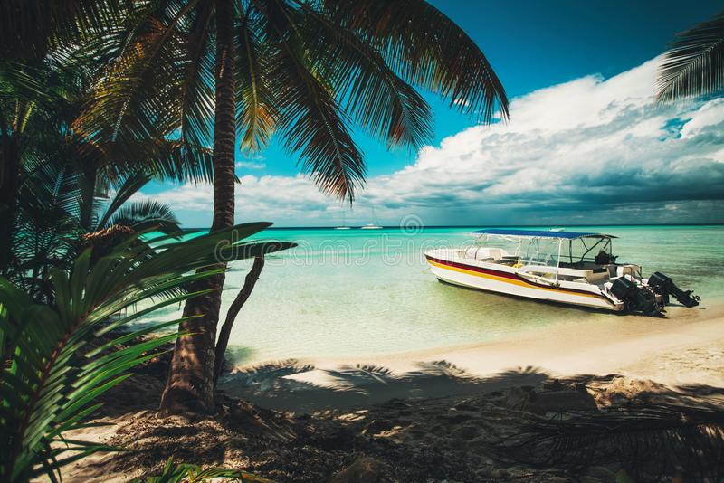 Île Saona Palmiers et bateau de vitesse sur la plage tropicale, République Dominicaine  photos stock