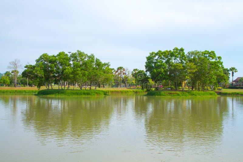 Download Île Tropicale Dans Le Grand Jardin Image stock - Image du paradis, clear: 45354729