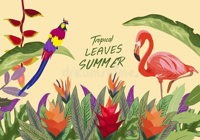 Île tropicale La forêt tropicale tropicale de jungle plante des oiseaux de fleurs, flamant, fond de frontière de toucan illustration libre de droits