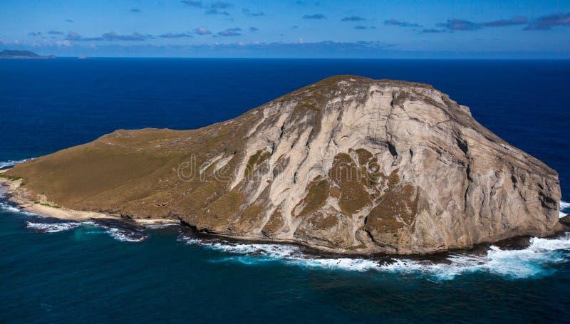 Île tropicale stupéfiante Oahu Hawaï de lapin photo libre de droits