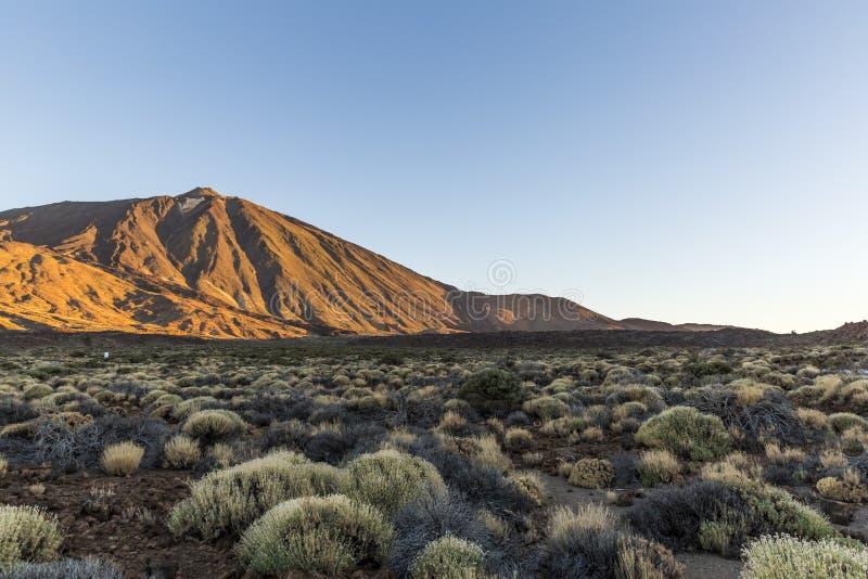 Îles Canaries, Ténérife Parque Nacional Del Teide photographie stock