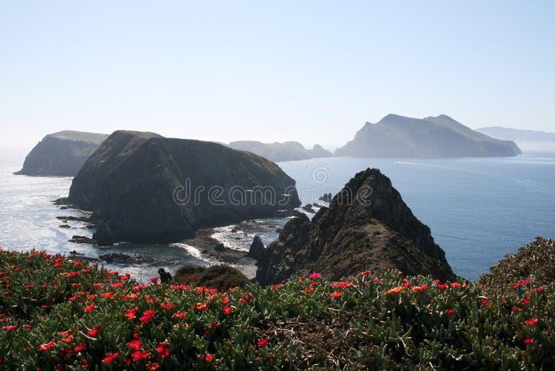 Îles de la Manche image libre de droits